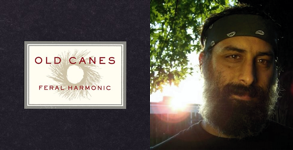 Feral Harmonic – Old Canes