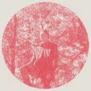 Heartland - Owen Pallett