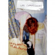 We Are Beautiful, We Are Doomed - Los Campesinos