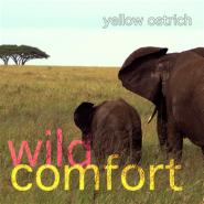Wild Comfort - Yellow Ostrich